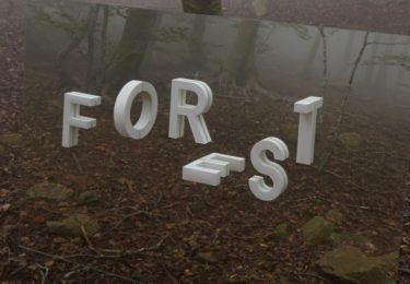 Forest by Estudi Ramon Carrete